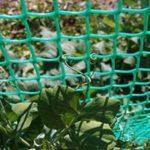 Пластиковая зеленая садовая сетка